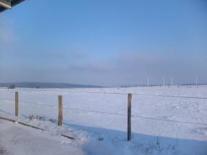Omgeving winter